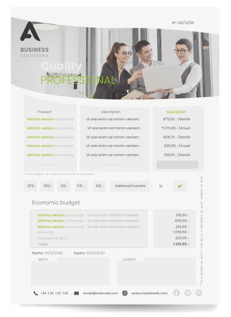 plantilla-presupuesto-negocios